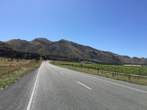 NZ_Roads